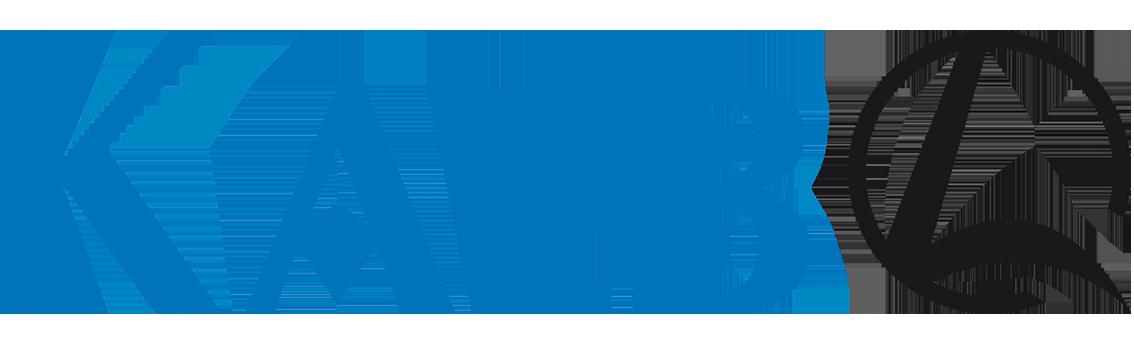 Kalb Ravensburg